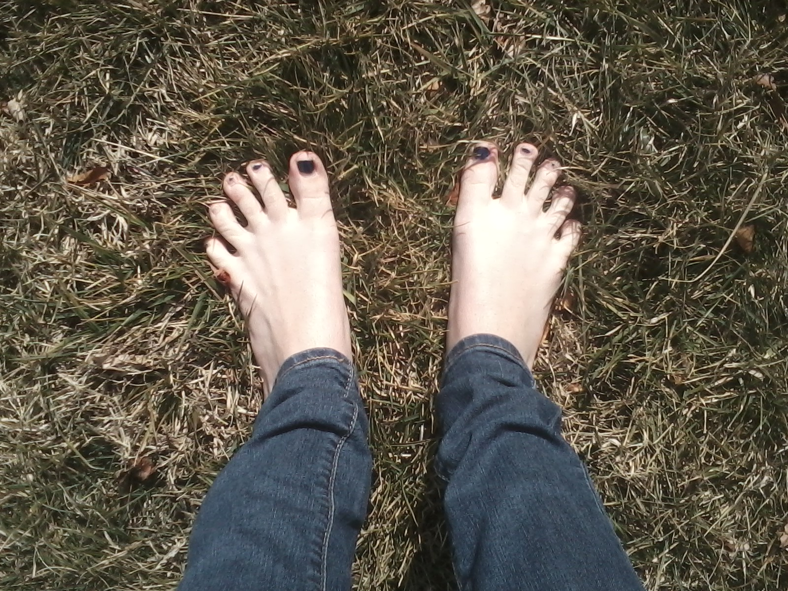 My feet in the summer grass.